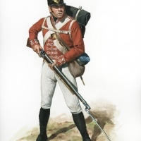 War of 1812. British private of the 41st Regiment of Foot